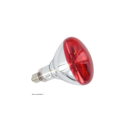 Ampoule infrarouge 150W